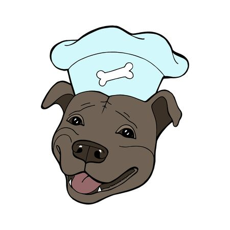Pit bull Terrier in a chefs cap. Vector illustration. Vector  pure-bred