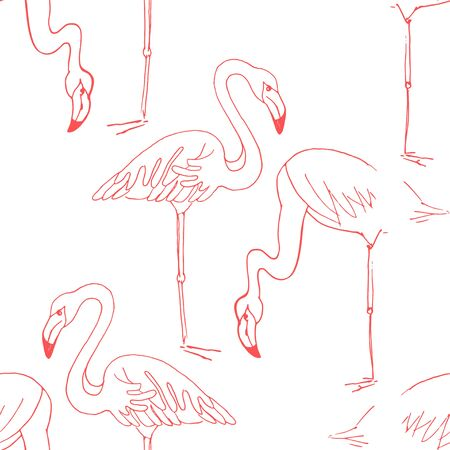 Flamingo hand draw seamless pattern. Vector birds isolated on white background, Digital paper