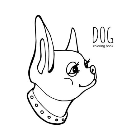 The vector of chihuahua that looking back at something. Coloring book page. Vector hand draw dog illustration.  イラスト・ベクター素材