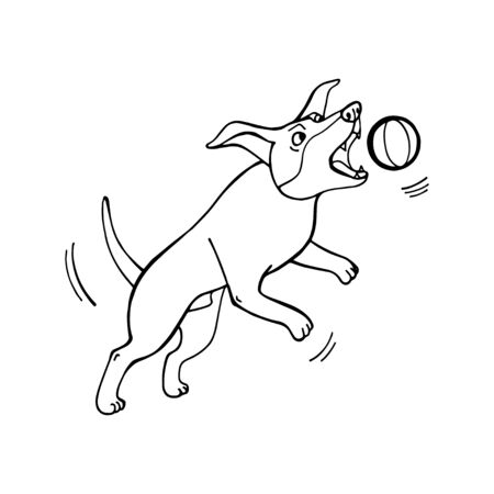 Funny cute dog playing with a ball. My best friend. Vector hand draw illustration