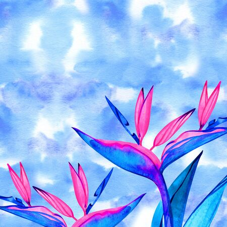 Watercolor strelitzia bouquet frame. Hand painted exotic flower with leaves. Watercolor Background with Strelitzia Flowers. Corner watercolor banner background with exotic flower. 写真素材 - 133269357
