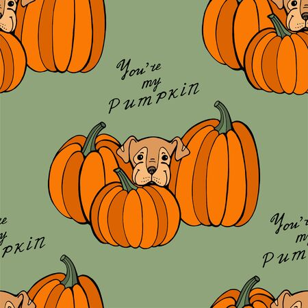 Halloween holiday surface pattern with cute cartoon dogs and pumpkins. Hand drawn illustration 写真素材 - 133269695