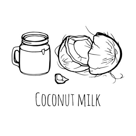 Coconut milk. Vector hand drawn illustration on white background.  イラスト・ベクター素材