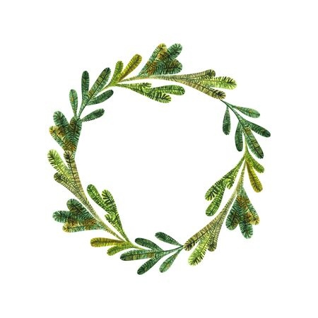 Bright green Christmas fir wreath