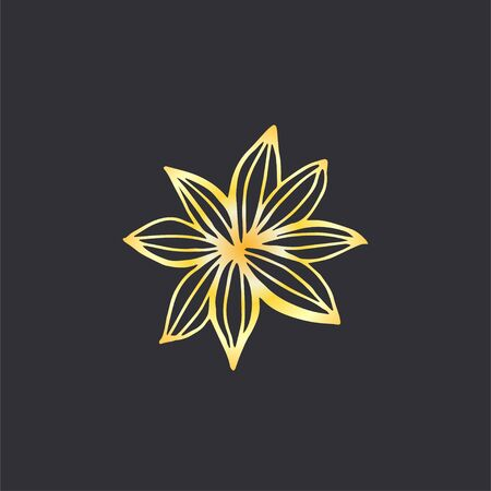 Hand drawn star anise flower. Best for cards, menu, web, invitations and other