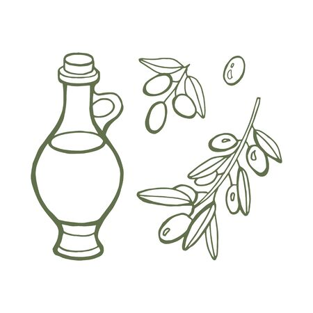 Hand drawn set Olive oil and branch. Vector illustration isolated on white background