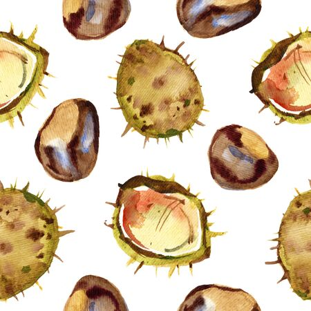 Chestnut walnut watercolor seamless pattern. Isolated illustration on white background.