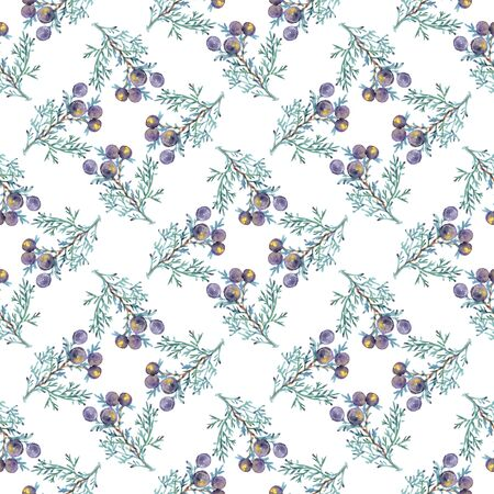 Watercolor seamless pattern of plants juniper isolated on white 写真素材