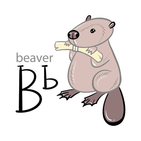 Alphabet letter B beaver children vector illustration. Hand draw cute cartoon style