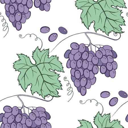 Floral grape seamless pattern. Vector hand draw cartoon style