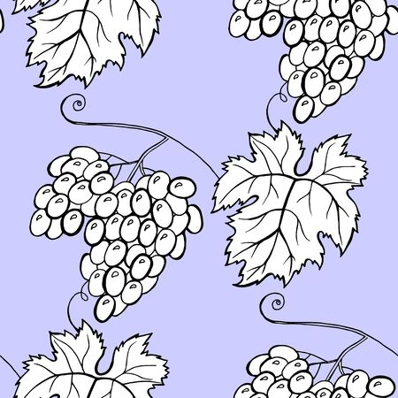 Vector grape vines seamless pattern background with hand drawn elements