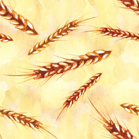Watercolor seamless pattern with hand drawn ear of wheat. Hand drawn sketched illustration. Concept for agriculture, organic cereal products, harvesting grain, bakery, healthy food. Reklamní fotografie