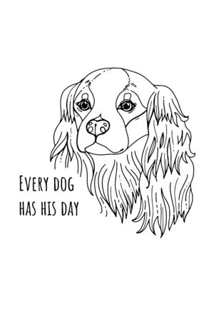 Coloring book page of Cavalier King Charles Spaniel. Hand drawn sketch for adult antistress coloring page, T-shirt emblem, or tattoo with doodle