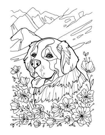 St. Bernard portrait in mountains. Coloring page. Vector illustration hand draw isolated on white background.