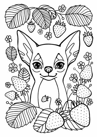 Coloring page. Lovely dog with heart for Valentines Day card. Anti stress colouring picture with chihuahua. Freehand sketch drawing with doodle elements