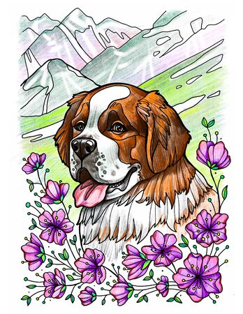 Portrait of saint bernard dog in blooming mountains Banco de Imagens