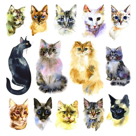 Set of watercolor cats. Isolated cat. Hand drawn set . Love cats