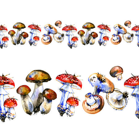 Hand drawn watercolor seamless horizontal border illustration mushroom. Forest wood woodland esign. Wild raw healthy organic ingridient. Autumn summer mushrooming. King 写真素材