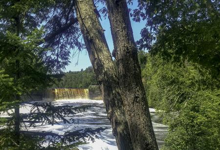 tahquamenon falls state park in upper michigan. beautiful waterfall and hiking trails.