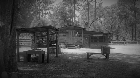 This is an old blacksmith shop moved to the Silver Springs State Park in Silver Springs, Florida