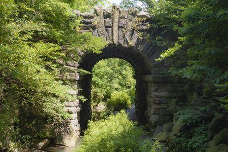 Bridges found in central park
