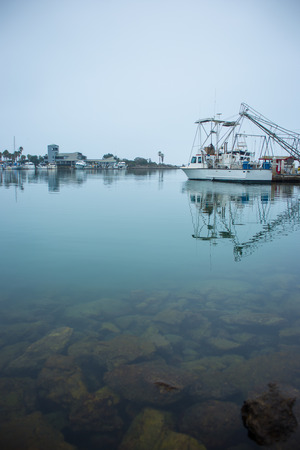 Many boats tied up at the dock within the harbor  Marine life is overcast with a foggy sky  Stock Photo