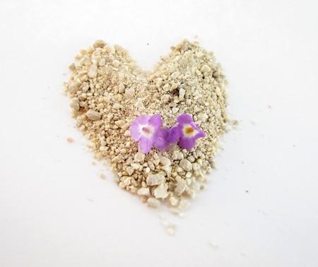 two tiny purple lantana flowers  sitting on a sand heart