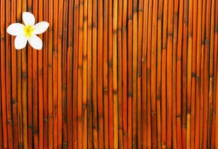 white plumeria flower on red and orange bamboo background Stock Photo