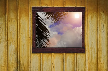 an open window with a tropical view photo