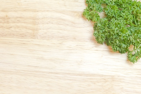 fresh sprig of parsley on a cutting board with copy space   photo