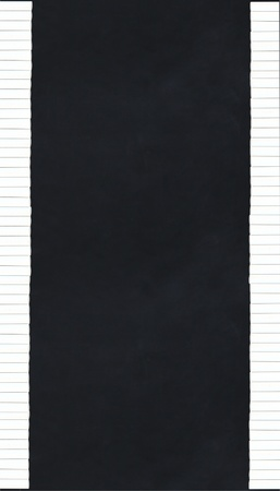 chalk sticks making a border along a black chalkboard - vertical