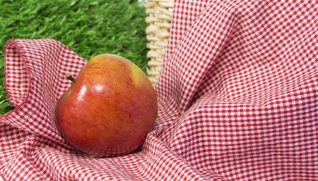 Red apple leaning to left on a checkered tablecloth in next to a wicker basket with grass in background