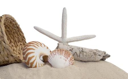 seashells, basket, starfish and sand on white background