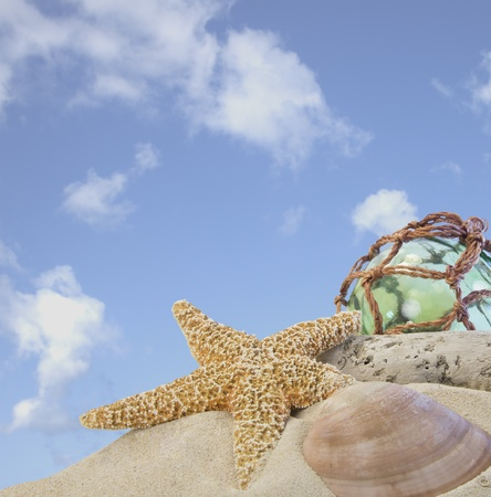 seashells on sand with glass ball with blue sky Standard-Bild