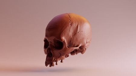 Chocolate Skull - skull scan is from SCSU VizLab - thingiverse.comscsuvizlababout - (CC Attribution)