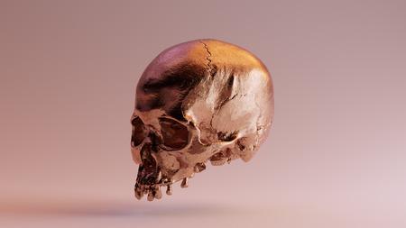 Bronze Skull 3d illustration 3d rendering