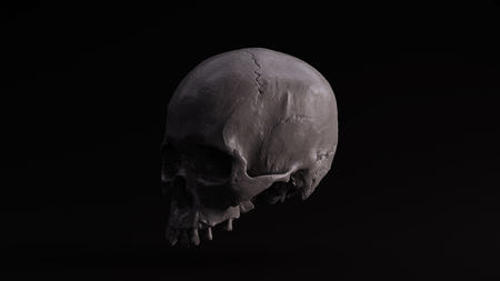 Grey Skull 3d illustration 3d rendering scsuvizlab - (CC Attribution)