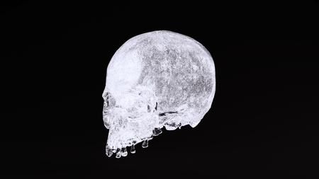 アイススカル3Dイラスト3Dレンダリングscsuvizlab - (CCアトリビューション) 写真素材