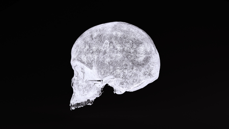 Ice Skull 3d illustration 3d rendering scsuvizlab - (CC Attribution)