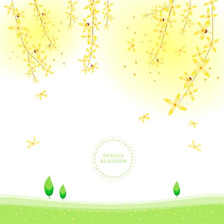 Spring blossom, Flower illustration, frame