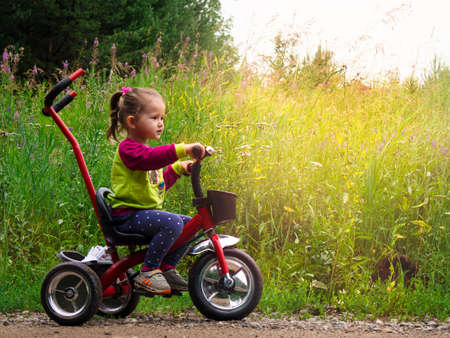 Little kid riding a tricycle on a sunny summer day in the meadow