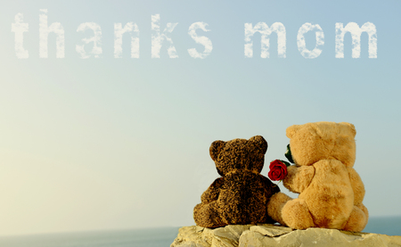 Teddy Bears for Mothers Day