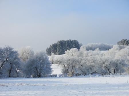 Frosty Countryside Фото со стока