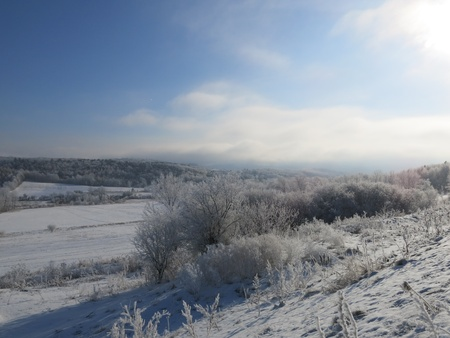 CV Winter-5 Фото со стока