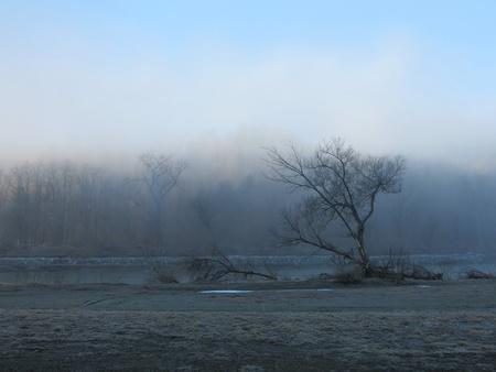 Early Morning Fog Banco de Imagens
