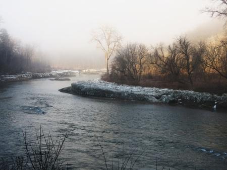 Golden haze-river bank
