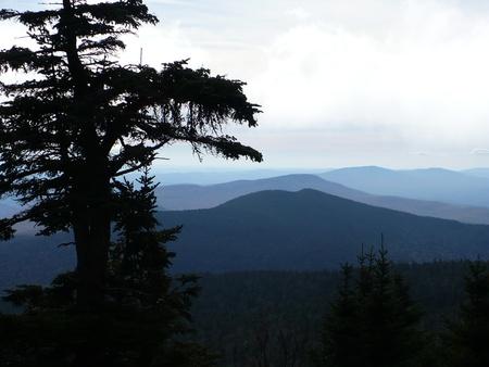 キリングトン MT からの眺め