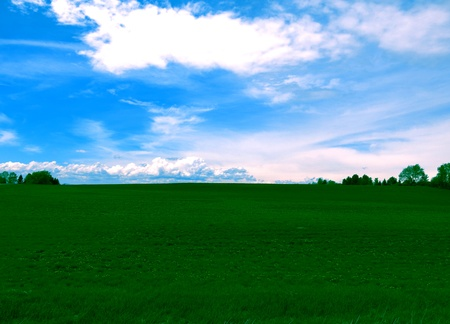 distant clouds and rich green grass with blue sky