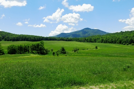 Summer meadows and mountain range of Vermont