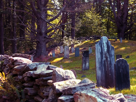 Cemetery in the shaded woods  Imagens